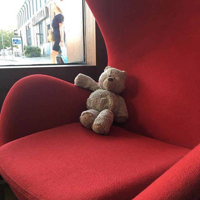 EFTERLYSNING! Den här björnen hittades utanför vår entré tidigare idag. Björnen mår efter omständigheterna bra och vilar just nu upp sig i Arne Jacobsens klassiska fåtölj Ägget. Han saknar dock sin ägare, så hör gärna av dig om du känner igen honom. @avalonhotel @nordichotels @nordicchoice @design_hotels #avalon_gbg #designhotels #madebyoriginals #hotelavalon #avalon #avalonhotel #göteborg #gothenburg #neveraverage #attitudeiseverything #borttappad #saknad