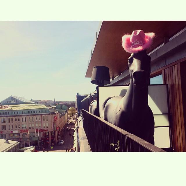 På våra Deluxe Terrass rum har vi dessa häftigt lampor som ser ut som hästar. Just denna häst har lampskärmen åkt iväg på lagning. Han kan ju inte stå och få solsting i vårsolen, så vi hittade en temporär lösning. @avalonhotels @design_hotels #avalon_gbg #designhotels #madebyoriginals #hotelavalon #avalon #avalonhotel #göteborg #gothenburg