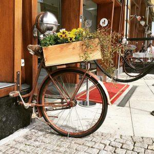 Vi söker ägaren till en damcykel av 1984 års modell. Vederbörande har cyklat rakt in i fasaden och lämnat kvar cykeln fastsittandes i väggen. Har du sett eller hört något ovanligt under den gångna helgen? Ring 031-751 02 00. Till dess att ägaren är återfunnen får cykeln fungera som ställ för våra blommor. @avalonhotel @nordichotels @nordicchoice @design_hotels