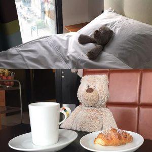 Ny dag, nya möjligheter. Vi fortsätter att följa vår upphittade björns vistelse hos oss. Efter en god natts sömn är det dags för frukost. Kaffe och en croissant fick det bli idag. Vi har dessvärre fortfarande inte lyckats hitta ägaren, men vi fortsätter leta. @avalonhotel @nordichotels @nordicchoice @design_hotels