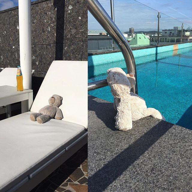 Vi söker fortfarande ägaren till den borttappade björnen som hittades utanför vår entré tisdagen den 21/9. I väntan på sin ägare har björnen tillbringat förmiddagen på vår terrass. @avalonhotel @nordichotels @nordicchoice @design_hotels #avalon_gbg #designhotels #madebyoriginals #hotelavalon #avalon #avalonhotel #göteborg #gothenburg #neveraverage #attitudeiseverything #borttappad #saknad